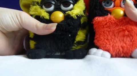 Furby Toh-dye and Toh-loo tanzen, verstecken