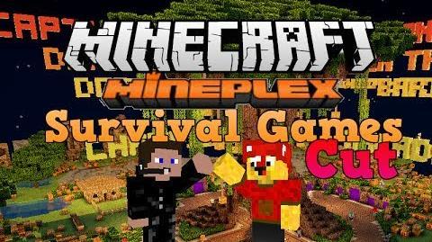 Minecraft Cuts