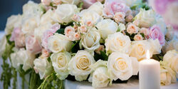 WeddingF