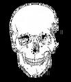 Thumbnail for version as of 07:37, November 23, 2013