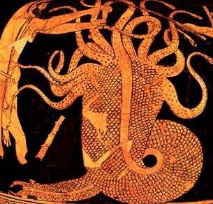 File:Hydra.6..jpg