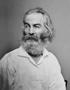 Walt Whitman - Brady-Handy restored