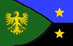 DFSNA flag