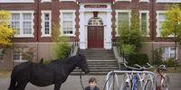 Storybrooke Schools/Gallery