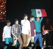 1D - Mexican Flag