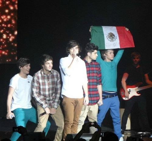 File:1D - Mexican Flag.jpeg