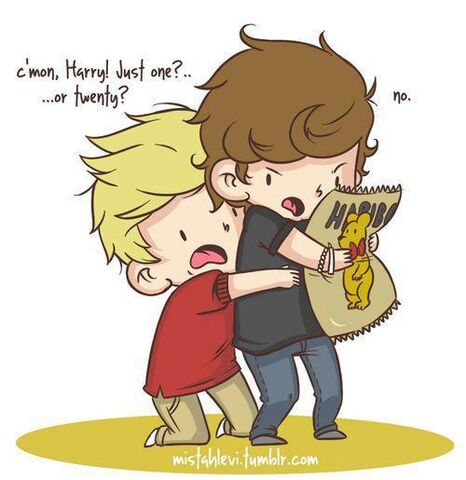 File:Tumblr Harry and Niall cute!!.jpg