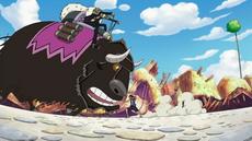 Duval | One Piece Wiki | Fandom powered by Wikia