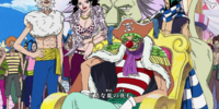 Buggy and Alvida Alliance
