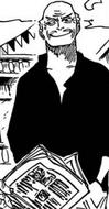Poro Manga Post Timeskip Infobox