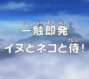 Episode 767