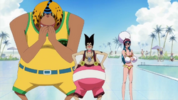 Foxy Pirates Swimsuits.png