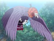 Fuza Anime Infobox.png