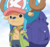 Chopper's Zou Departure Outfit