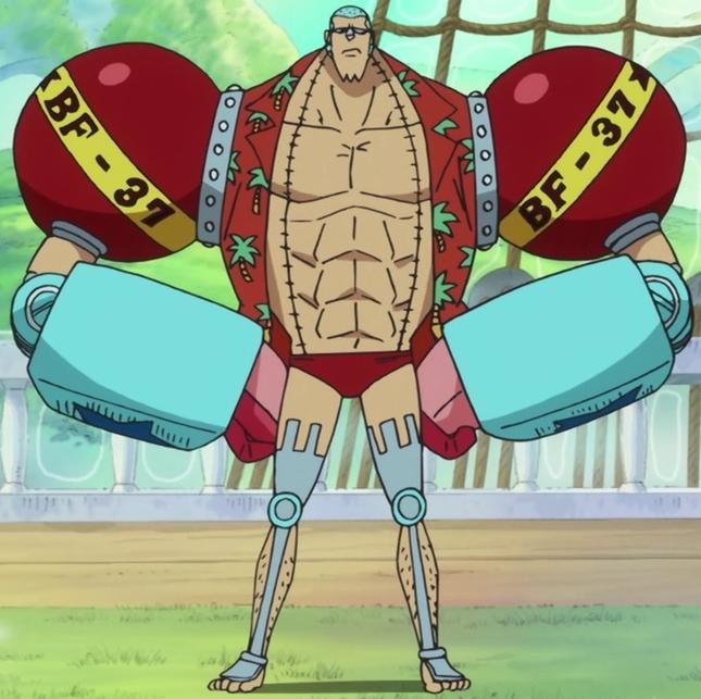 ملف:Franky Anime Post Timeskip Infobox.png