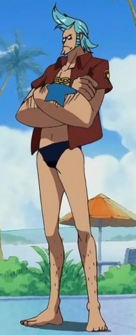 File:Franky Spa Island Arc Outfit.png