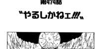Chapter 474