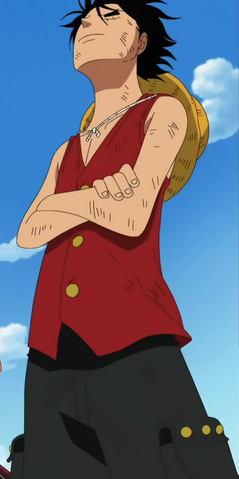 File:Luffy's Enies Lobby Arc Outfit.png