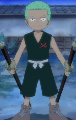File:Zoro Kid.png