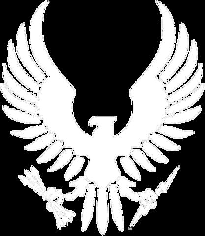 File:UGI Air Force.png