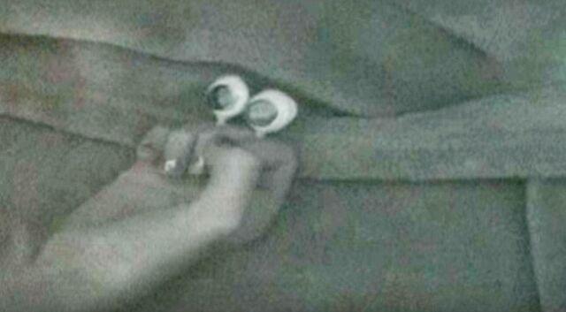 File:Oobi Babies Night Crawlers.jpg