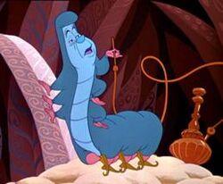 Caterpillar Alice2014