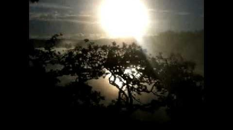Telemann Bassoon Sonata in f minor.avi