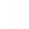 Armor Piercing Rounds perk icon.png