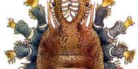 Troguloidea