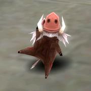 Pet-anim-boar-piglet01
