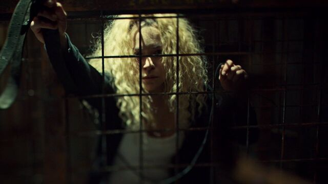File:OrphanBlackS01E091177.jpg