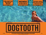 Dogtooth 014