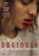 Dogtooth 011