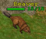 File:Creature Beaver.png