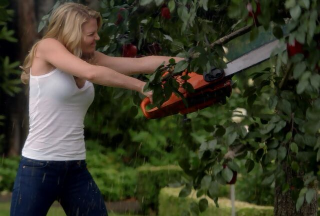File:1x02 ApplePicking.jpg