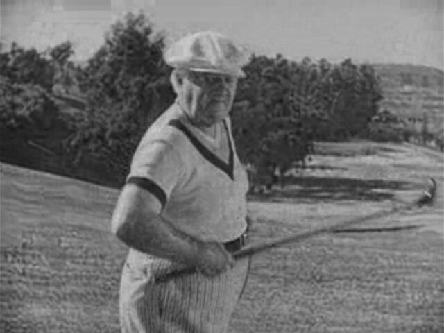 File:Golfer1.jpg