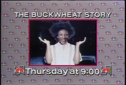 Snl buckwheat story