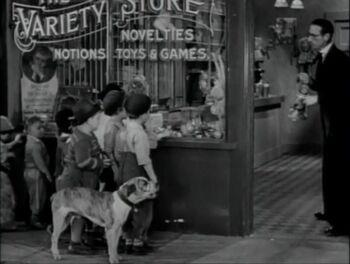 Kibrick's Variety Store