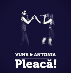 Vunk-pleacawide3