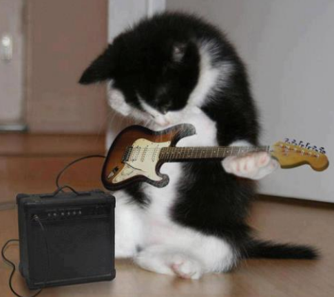 File:Kitty.rock.1.png