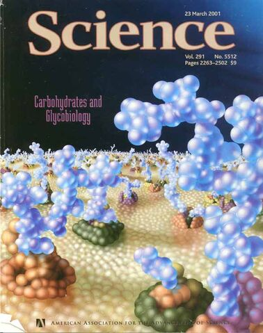 File:ScienceMagCover23June2001 72.jpg