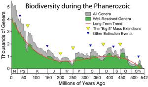 Phanerozoic Biodiversity