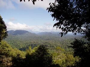 View from Bukit Terisek