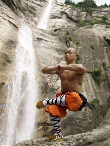 File:Shaolin-temple-martial-arts-12.jpg