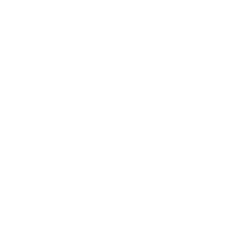 File:Steel Dominance icon.png