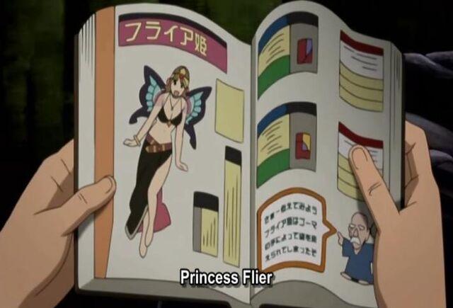 File:PrincessFlier.jpg