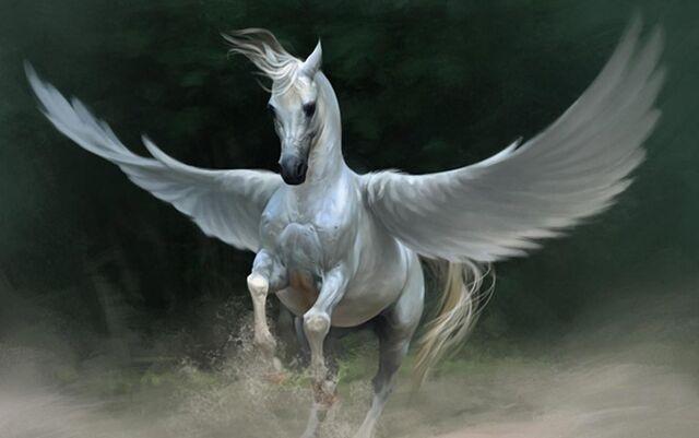 File:Amazon - Cecilia's Pegasus.jpg