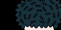 Colonel Noodle