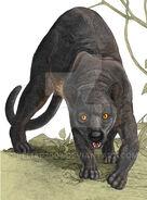 Malagasy carnivores giant fosa by beliar2007-d9lr5n8