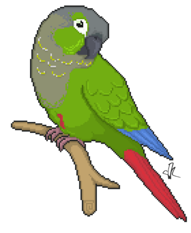 File:Wikia-Visualization-Add-5,parrots.png